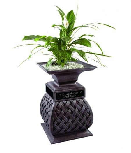 Watch the beauty of a plant growing up from your loved ones ashes